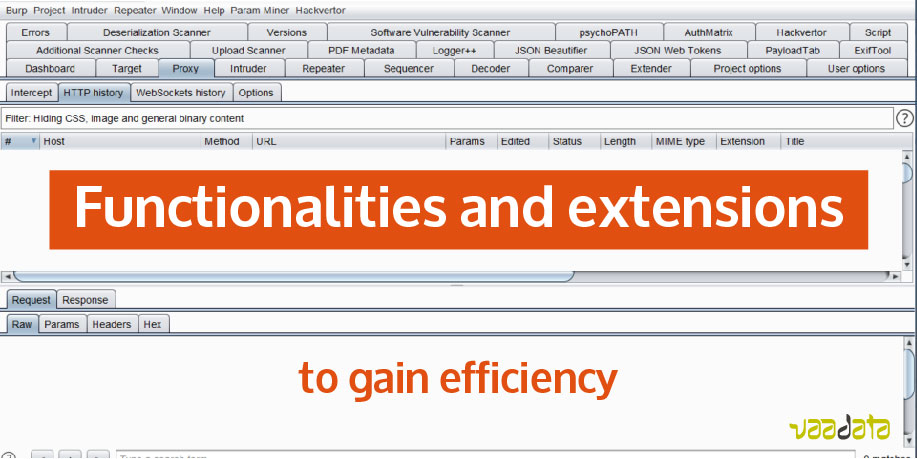 Functionalities and extensions of Burp Suite